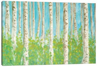 VIbrant Birchwood Canvas Art Print