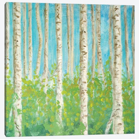 VIbrant Birchwood Square Canvas Print #WJO12} by Walt Johnson Art Print