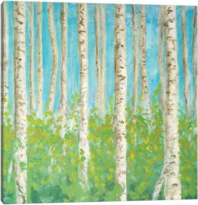 VIbrant Birchwood Square Canvas Art Print