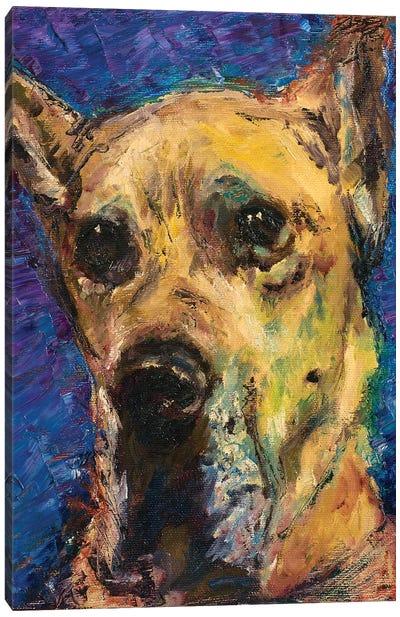 Happy Companion II Canvas Art Print
