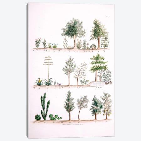 Plate I Canvas Print #WJT1} by William Jowett Titford Canvas Art