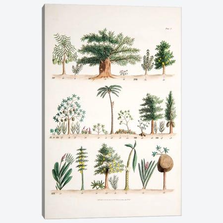 Plate II Canvas Print #WJT2} by William Jowett Titford Canvas Artwork