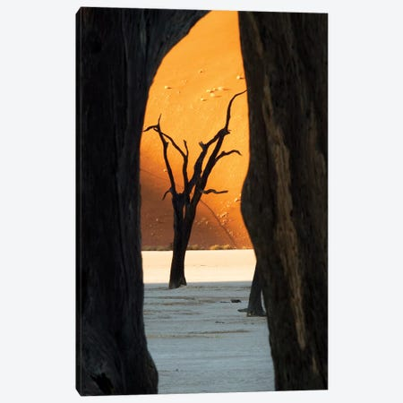 Dead Acacia Trees, Deadvlei, Namib Desert, Namib-Naukluft Park, Namibia Canvas Print #WKA2} by Wendy Kaveney Art Print