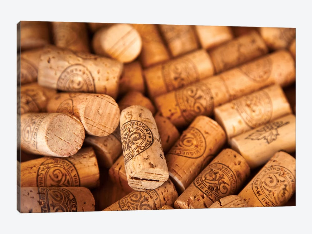 Viu Manent Wine Corks In Zoom by Wendy Kaveney 1-piece Canvas Wall Art