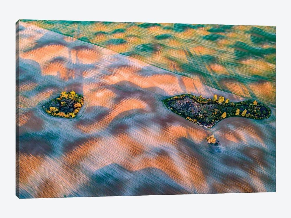 Fields In Mazury by Wiktor Baron 1-piece Canvas Print