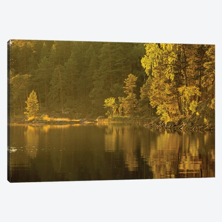 Authum Lake In Finland Canvas Print #WKB2} by Wiktor Baron Canvas Artwork