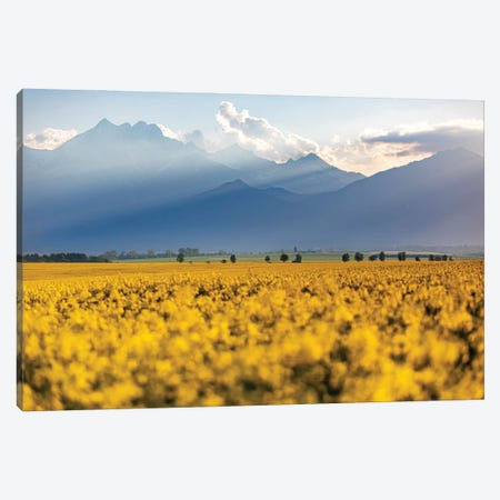 Hights Tatras Mountains I Canvas Print #WKB38} by Wiktor Baron Canvas Art Print