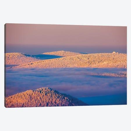 Izerskie Mountains III Canvas Print #WKB42} by Wiktor Baron Canvas Art