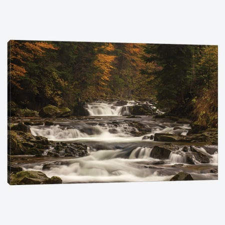 Kamienica River Canvas Print #WKB46} by Wiktor Baron Canvas Print