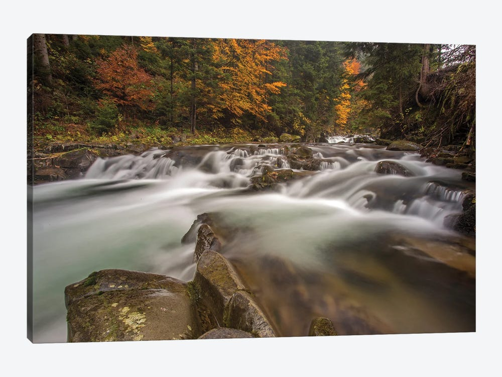 Kamienica River In Gorce by Wiktor Baron 1-piece Canvas Print