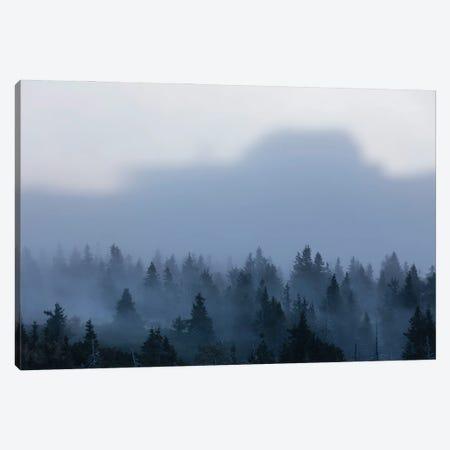 Karkonosze Mountains I Canvas Print #WKB48} by Wiktor Baron Canvas Artwork