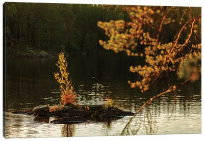Lake In Finland I Canvas Art Print