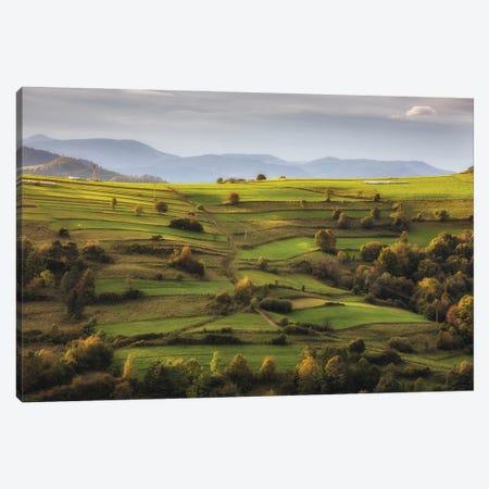 Pasture In Beskid Sądecki Canvas Print #WKB71} by Wiktor Baron Canvas Print