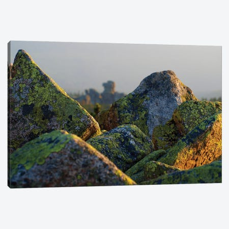 Rocks - Karkonosze Canvas Print #WKB83} by Wiktor Baron Canvas Art