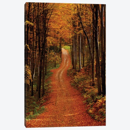 Route In Beskid Wyspowy Canvas Print #WKB84} by Wiktor Baron Canvas Print