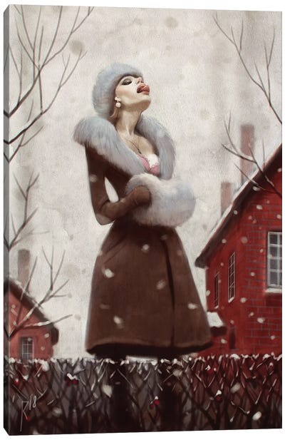 Snow Catcher Canvas Art Print