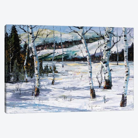 Winter Birch Canvas Print #WLA22} by Willson Lau Canvas Art
