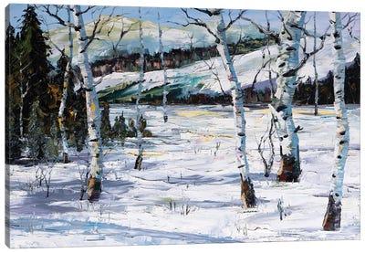 Winter Birch Canvas Art Print