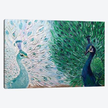 Peacock II Canvas Print #WLA23} by Willson Lau Canvas Art