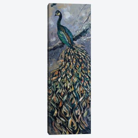 Peacock IV Canvas Print #WLA25} by Willson Lau Art Print