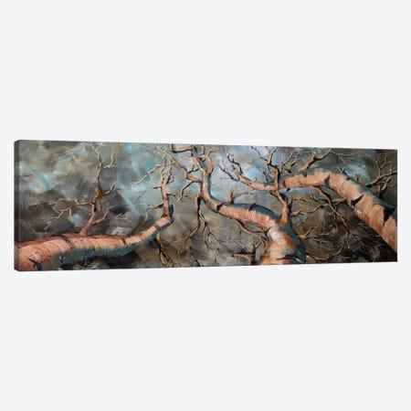 Birch Forest III Canvas Print #WLA30} by Willson Lau Canvas Print