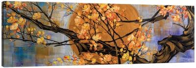 The Golden Zen Series XI - Delight Canvas Art Print