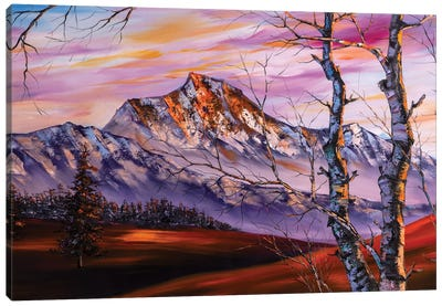 The Snow Mountains Series IV The Heavenly Lights Canvas Art Print