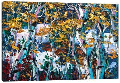 Birch Forest IV Canvas Art Print