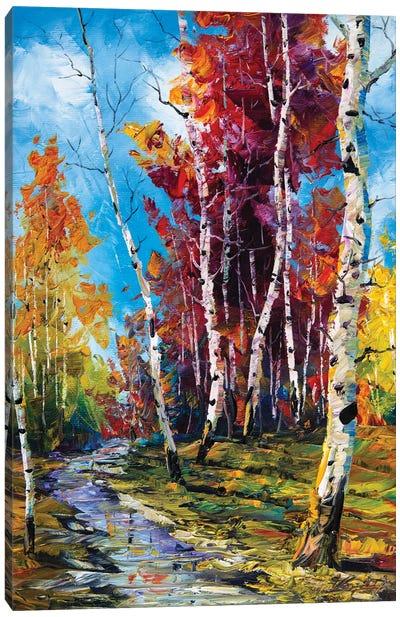 Birch Forest V Canvas Art Print