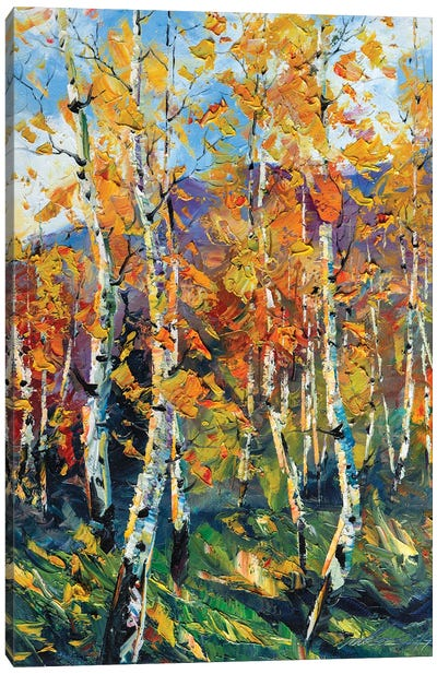 Birch Forest VI Canvas Art Print