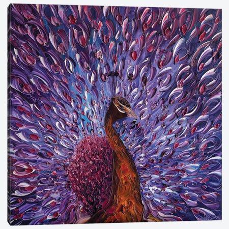 Peacock XXIII Canvas Print #WLA49} by Willson Lau Canvas Artwork