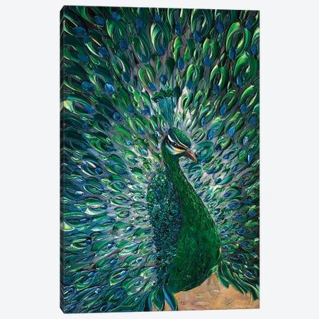 Peacock XXV Canvas Print #WLA52} by Willson Lau Canvas Print
