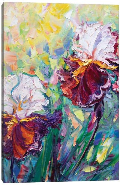 Irises III Canvas Art Print