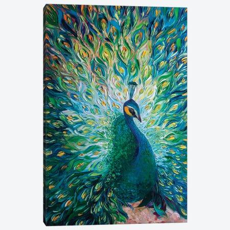 Peacock XXXII Canvas Print #WLA61} by Willson Lau Canvas Artwork