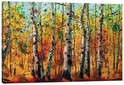Birch Forest VIII Canvas Art Print