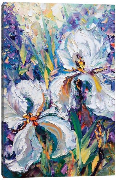 Irises IV Canvas Art Print