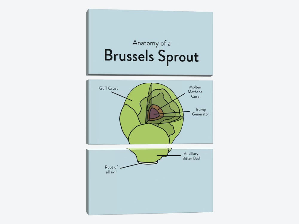 Brussels by Stephen Wildish 3-piece Canvas Art Print