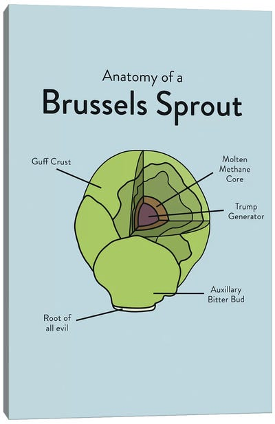 Brussels Canvas Art Print