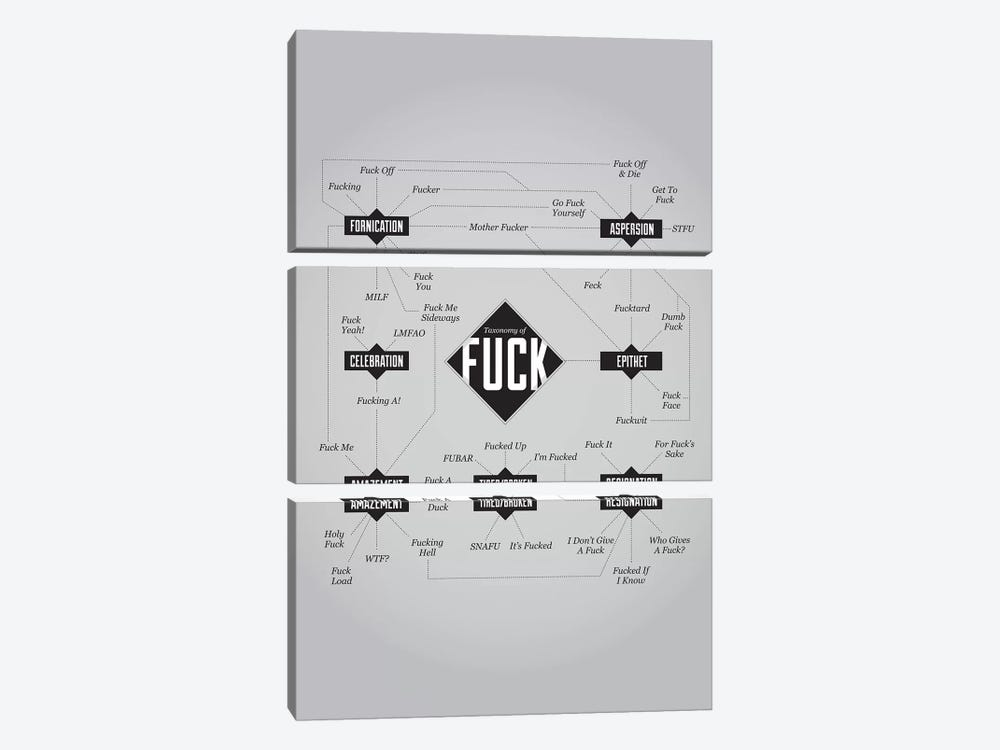 Fuck by Stephen Wildish 3-piece Canvas Wall Art