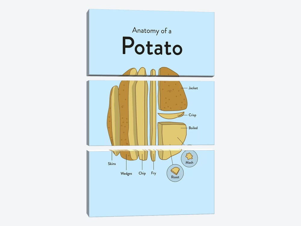 Potato by Stephen Wildish 3-piece Canvas Wall Art