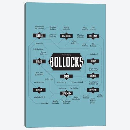 Bollocks Canvas Print #WLD9} by Stephen Wildish Canvas Art Print