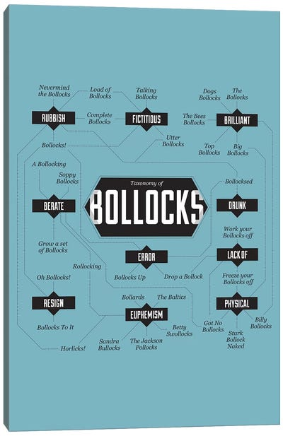 Bollocks Canvas Art Print