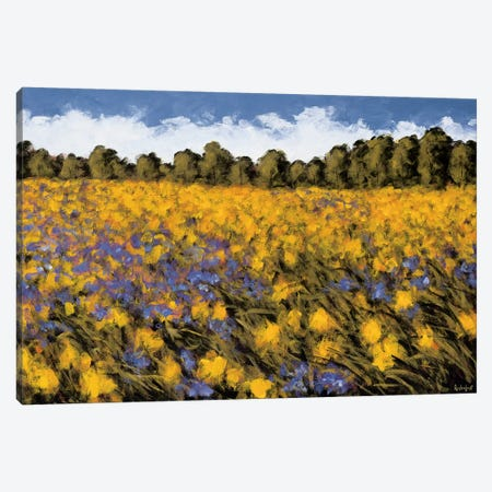 Fields Of Gold Canvas Print #WLE1} by Wayne Leidenfrost Canvas Wall Art