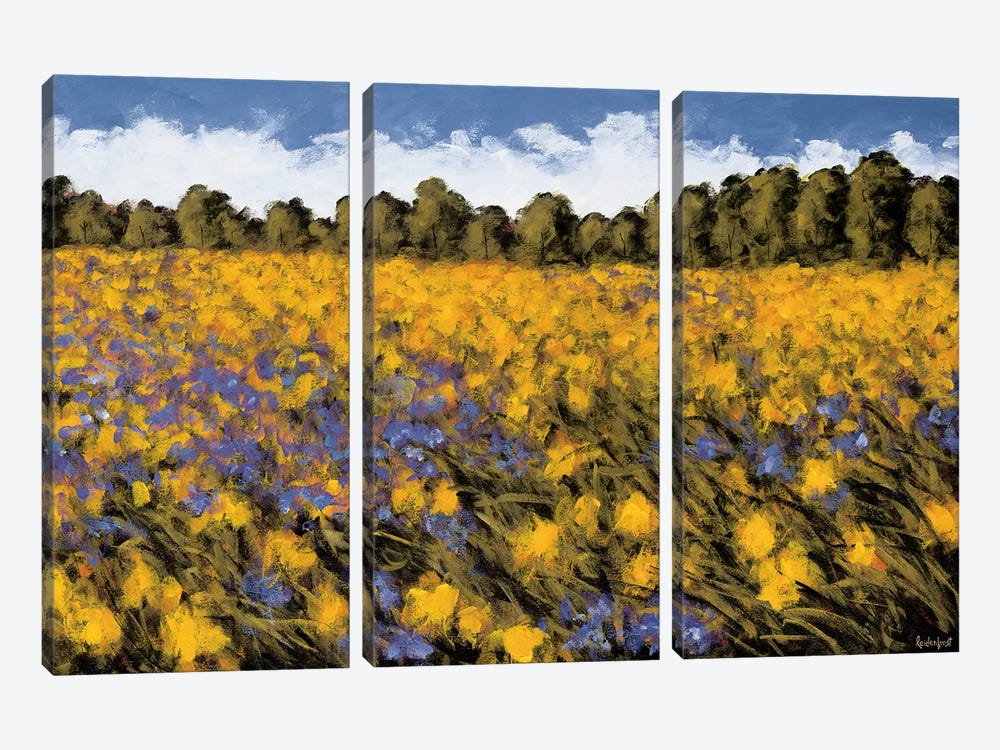 Fields Of Gold by Wayne Leidenfrost 3-piece Canvas Art Print