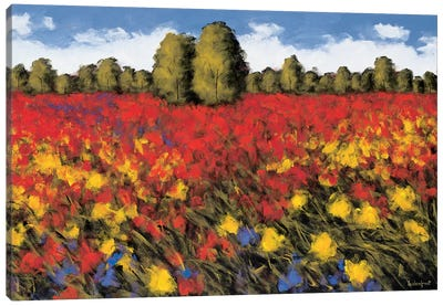 Summer Splendor Canvas Art Print