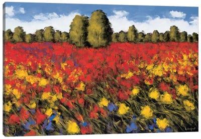 Summer Splendor Canvas Art Print
