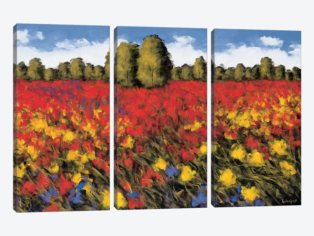 Summer Splendor by Wayne Leidenfrost 3-piece Canvas Artwork