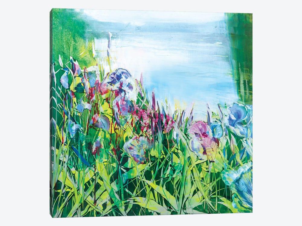 Iris on the Pond by Jen Williams 1-piece Canvas Artwork