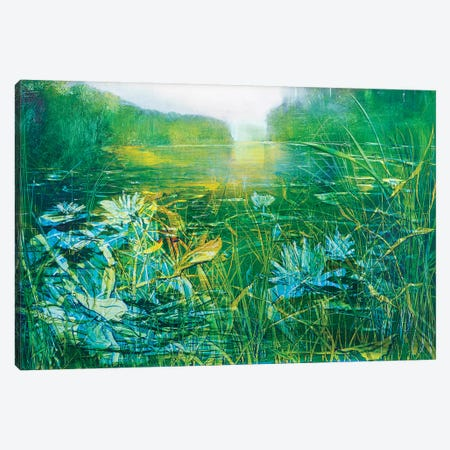 Lilly on the Pond Canvas Print #WLM13} by Jen Williams Canvas Print