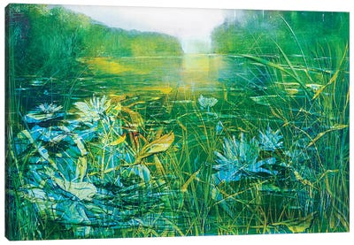 Lilly on the Pond Canvas Art Print